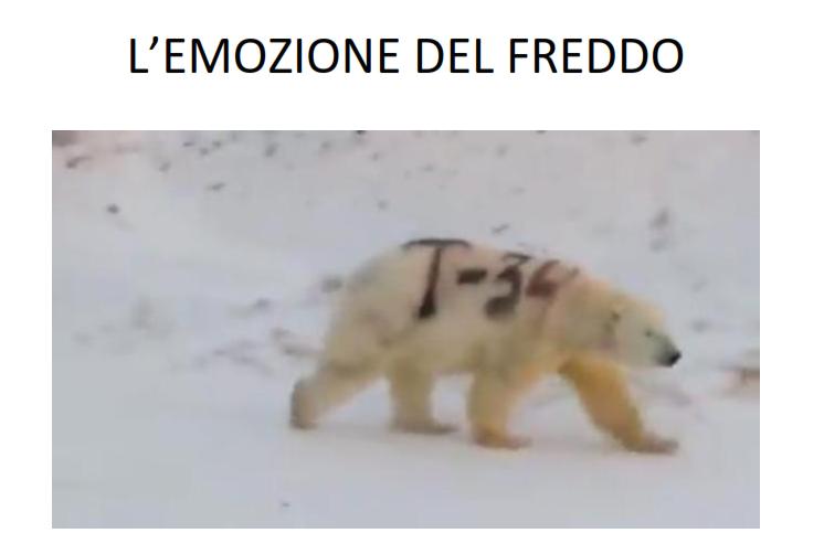 L'emozione del freddo